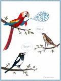 El papagayo, el tordo y la urraca. Fábulas para niños