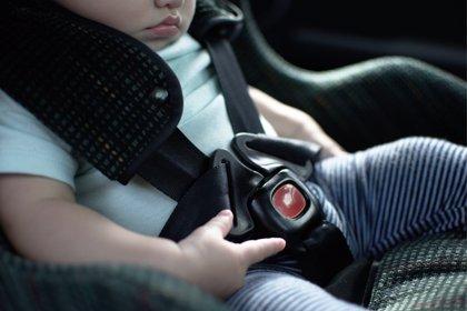 """Sillitas con sistema """"antiolvido"""", propuesta italiana para mejorar la seguridad vial"""