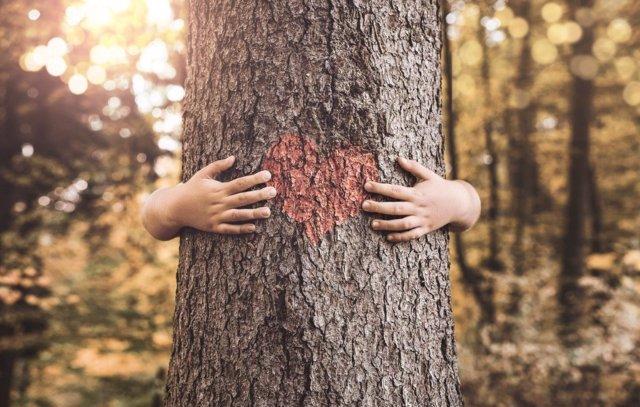 La Asociación Mundial de Educadores Infantil propone iniciar la Educación medioambiental desde los 2 años