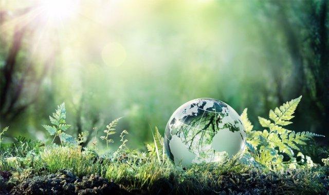 Transmitir una conciencia medioambiental a los más pequeños es muy importante.