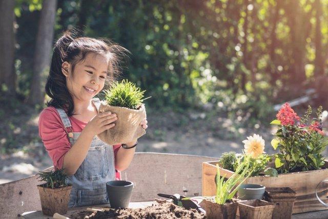 Empezar por el jardín: ideas para que experimenten con la naturaleza