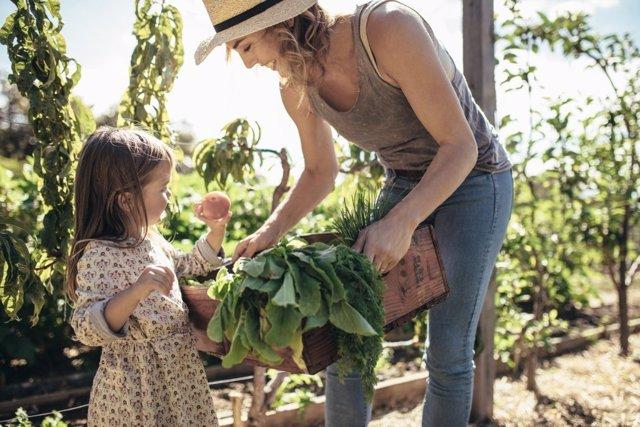 La segunda gran preocupación de las madres es el medio ambiente