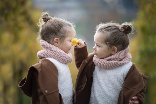 Ideas para hacer más sencilla la educación de gemelos o mellizos