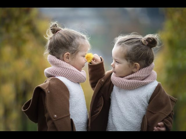 Gemelos o mellizos: educación multiplicada por dos