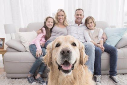 El lado positivo del confinamiento: mejoró el vínculo entre los familiares