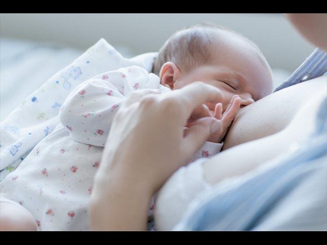 ¿Por qué la lactancia los protege? ¡La ciencia descubre la razón!