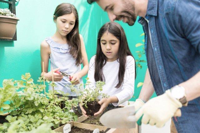 El ecologimos puede ser uno más en casa gracias a la práctica de rutinas como la creación de un huerto urbano.