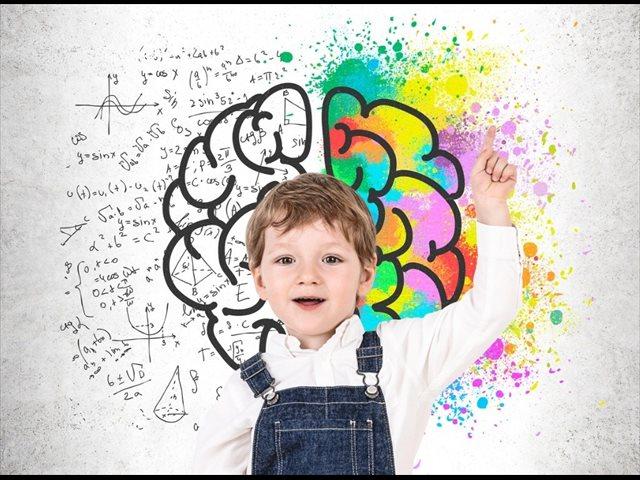 El desarrollo cerebral de los niños de la infancia a la adolescencia