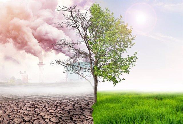 Frenar el cambio climático depende de nosotros